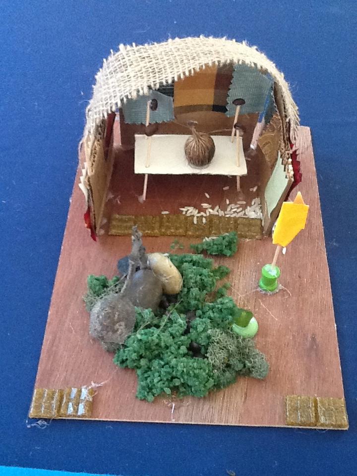 A Jungle Home